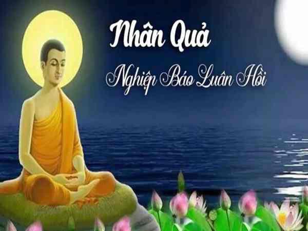 Những lời Phật dạy về nhân quả